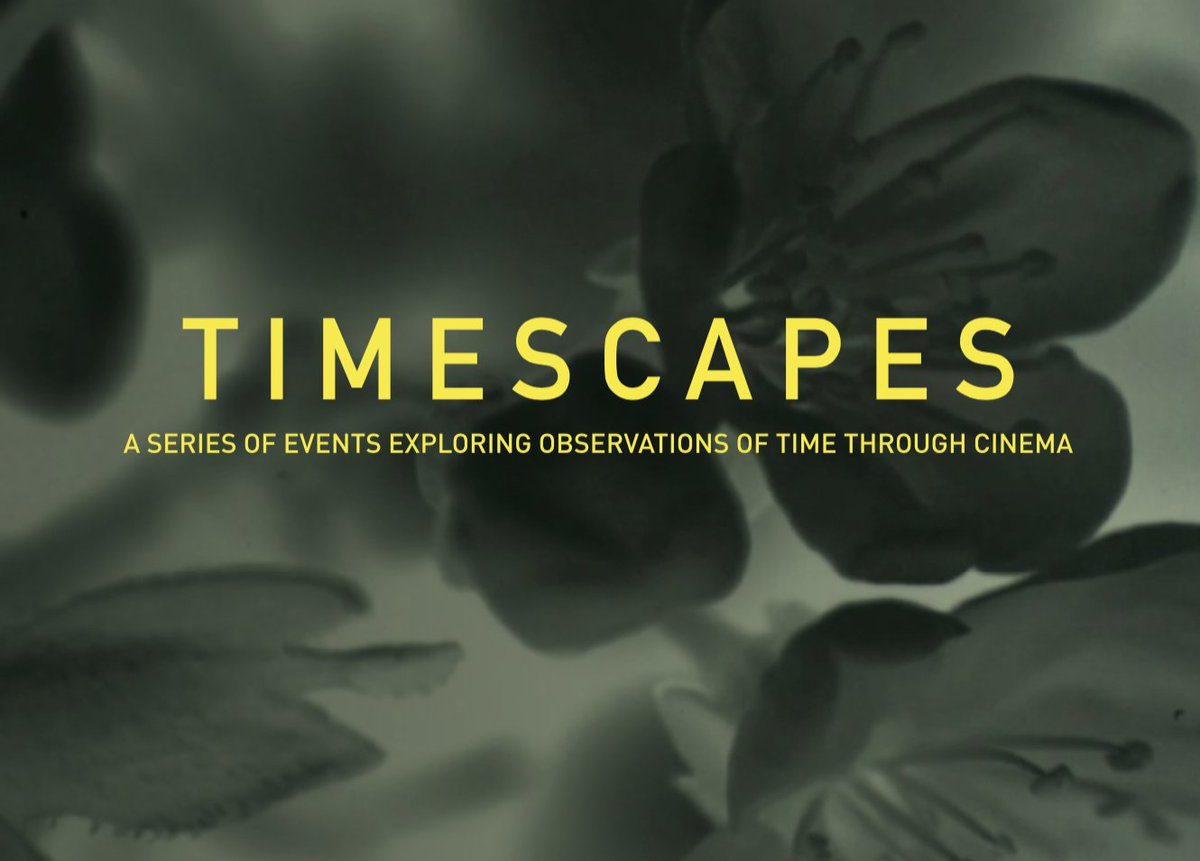 TIMESCAPES: LOOKING FOR LUCEY – Cultural Review