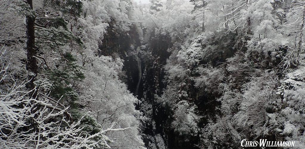 Corrieshalloch Gorge Macbackpackers tour - Chris Williamson